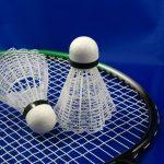 Badminton Summer Camp 2019