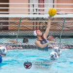 Girls Water Polo Falls To University City In CIF Quarters