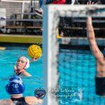Girls Water Polo Falls To UC In CIF Quarter Finals