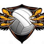 Boys JV1 Volleyball Beats Coronado On The Road