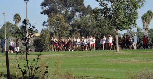 Cross Country – Western League Cluster 4