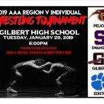 AAA Region V Individual Tournament