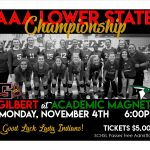 Volleyball AAA Lower State Championship Monday