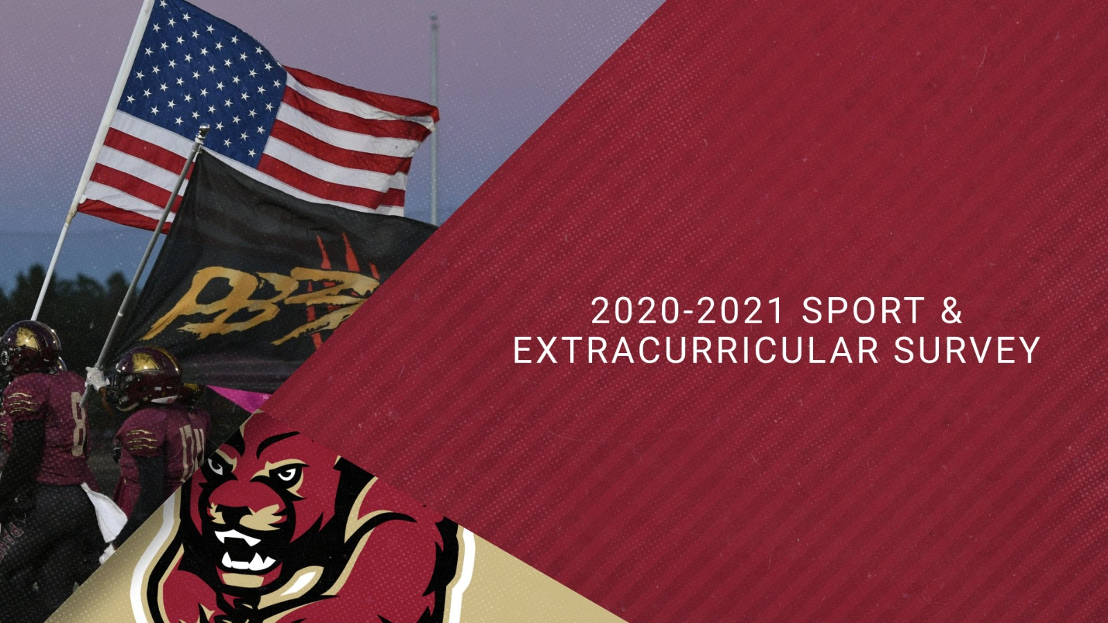 2020-2021 Sport and Extracurricular Interest Survey