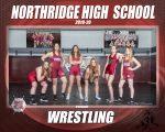 Girl's Wrestling 2019-2020
