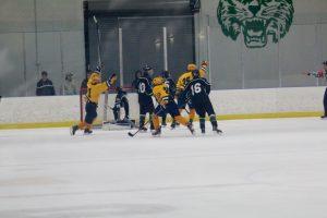 Hudsonville VS Bishop Foley  1/15/16