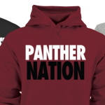 ORDER YOUR PANTHERS GEAR ONLINE!