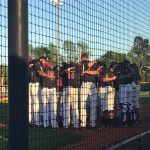 CF Baseball Receives ABCA Academic Excellence Award for 3rd Straight Year
