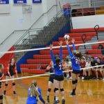 Eagles Soar Over Cougars