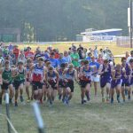 Eagle Cross Teams Capture County Championships