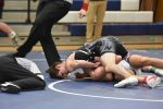 Wrestlers Finish Season at the OHSAA District Tournament