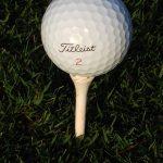 All Big Bend Golfers Named