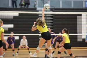 Volleyball Photos Courtesy of Mike Hogan