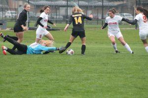 Thornapple Kellogg High School Varsity Ladies Soccer Falls To Hamilton High School 0-2