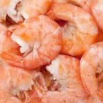 Shrimp Fundraiser