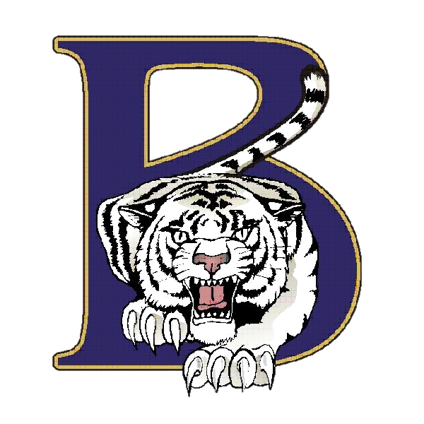 Playoff Match at Home-Blythewood Lady Soccer