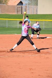 2015 Softball Gallery