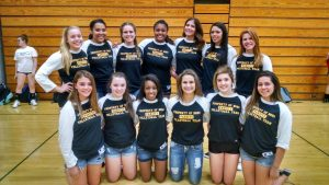 2015 BGHS Girls Volleyball Team