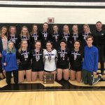 Girls Varsity Volleyball falls to Ursuline Academy in District Finals