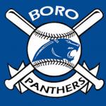 Springboro Baseball Clinic