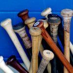 Sutton/NAHS Baseball Night