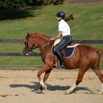 Girls Varsity Equestrian
