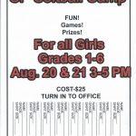 Softball skills camp