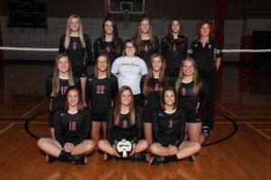 2015 Volleyball Teams & Seniors