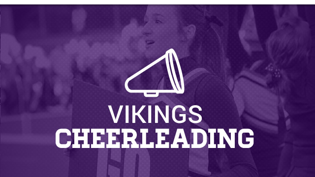 Viking Cheer Teams Selected for the 2018-2019 School Year!