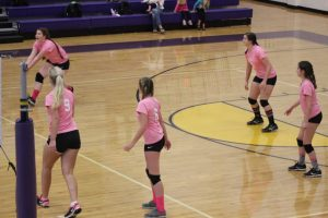 Volleyball – Pink Out