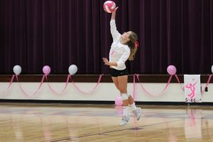 Volleyball v Union