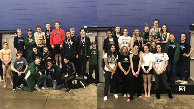 WHS Swimming Advances to Regionals