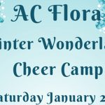 Winter Cheer Clinic – Saturday, January 20th
