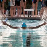 Swim: Girls and Boys Best Spring Valley