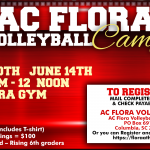 Summer Volleyball Camp Registration Open