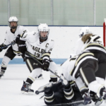 Apple Valley High School Girls Varsity Hockey beat Faribault High School 1-0