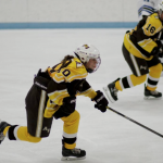 Apple Valley Girls Hockey beat Hastings 4-0
