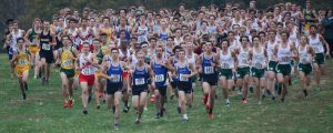 XC JV Regional Photo Gallery