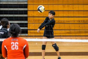 8.25.15: Volleyball (Varsity): O-W at LR