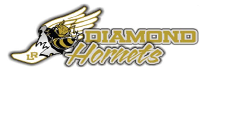 Diamond Hornets Invitational 2018