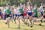 Cross Country – Semi-State Meet – Boys – Sat., Oct. 24, 2020