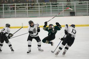 Northview / Comstock Park / Sparta Varsity Hockey vs. FHE 11-22-14