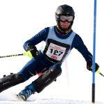 Alpine Shines at State Meet