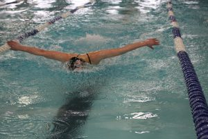 Swimming and Diving OCCs