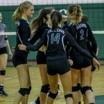 Falcon Volleyball Season Recap