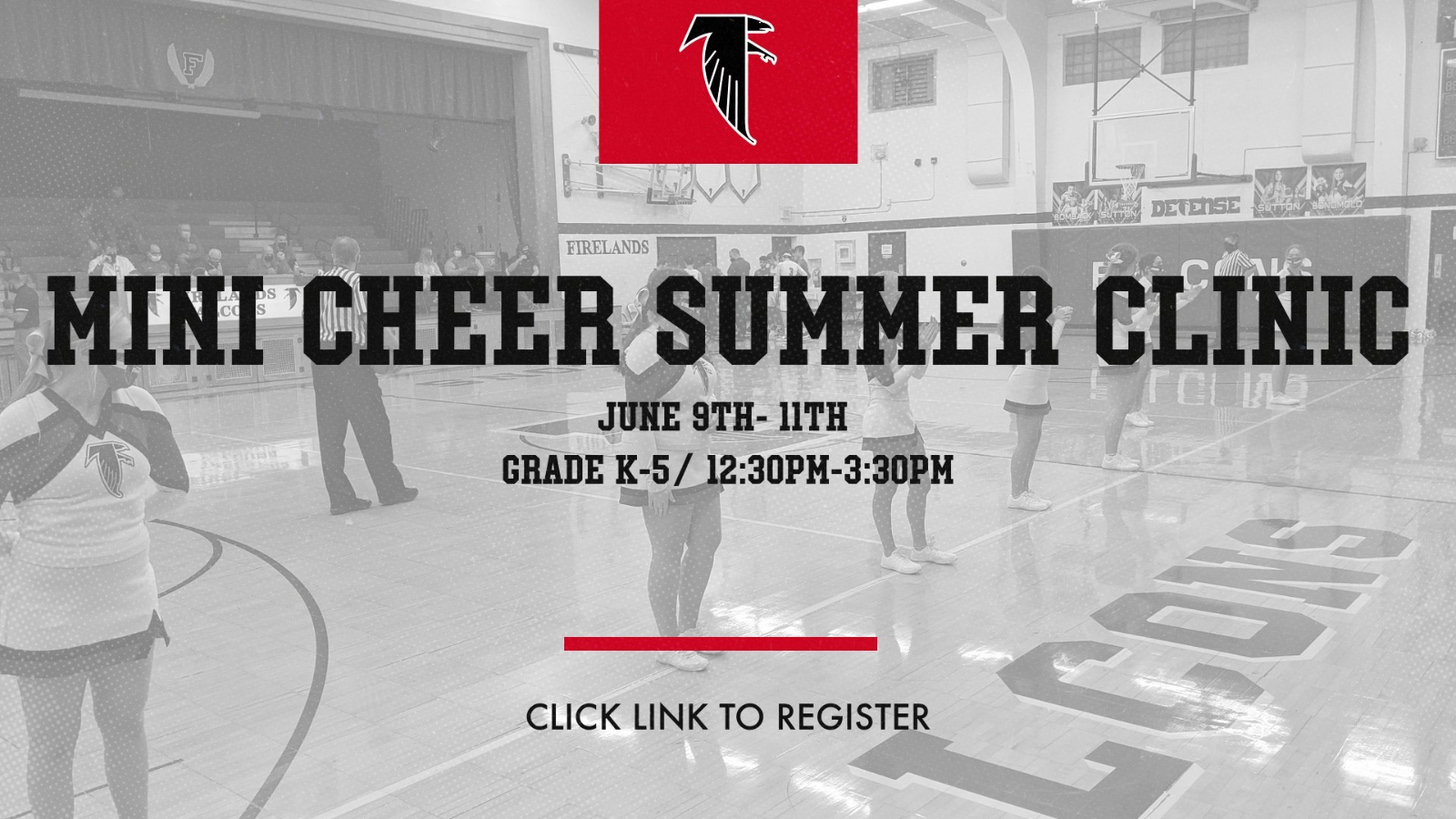 Mini Cheer Summer Camp Registration