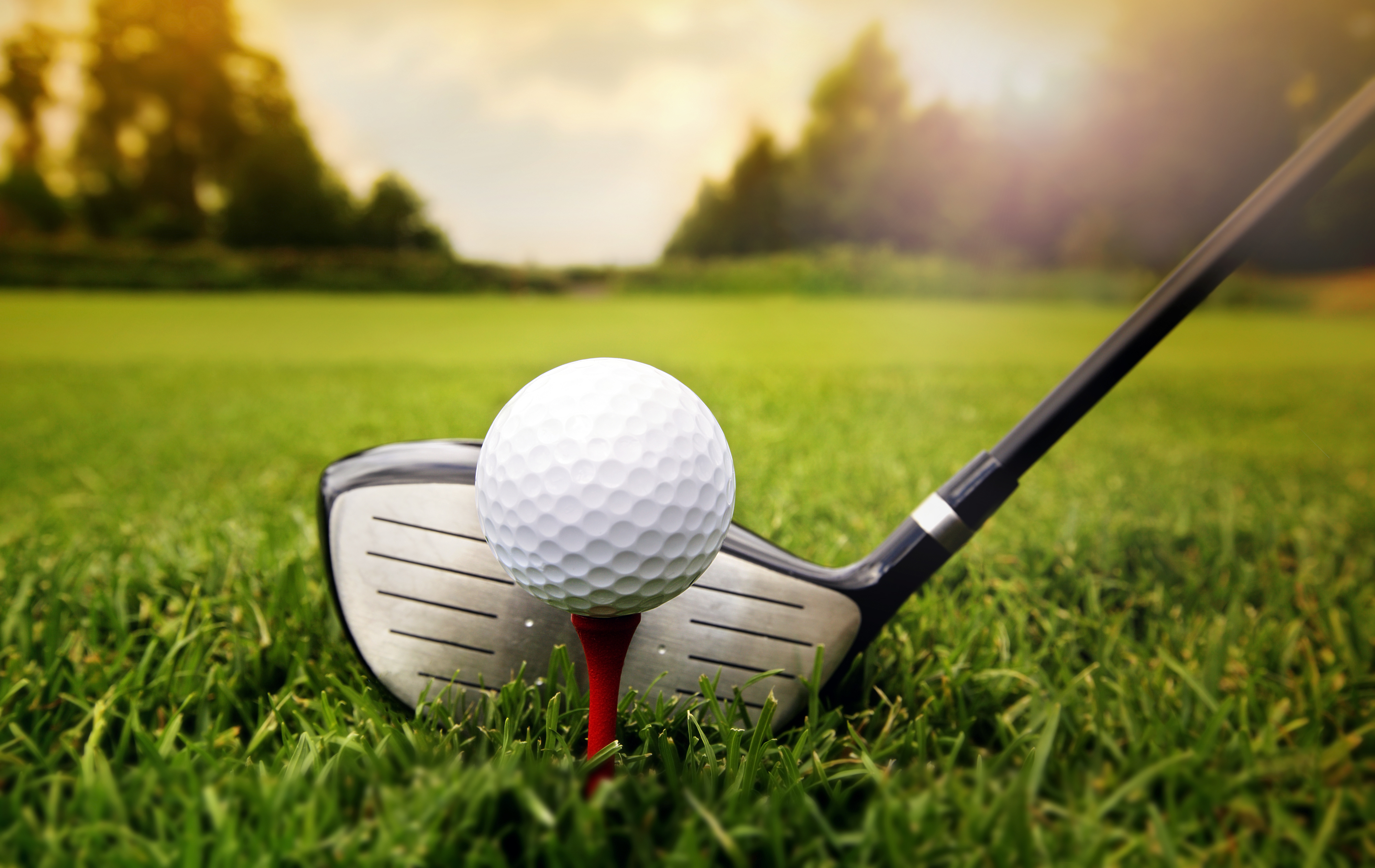 Tuesday Golf Results