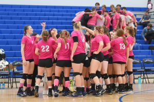 Volleyball 'Dig Pink' Match