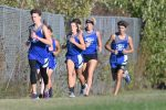 LaVille Cross Country Information
