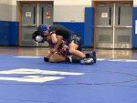 Wrestling Falls To Goshen